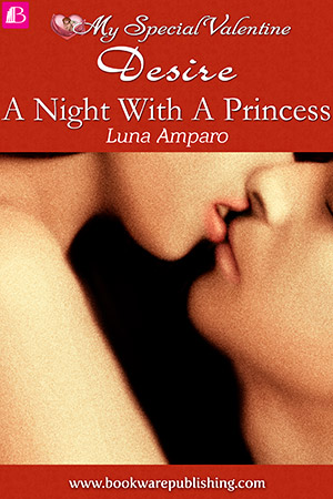 04-a-night-with-a-princess